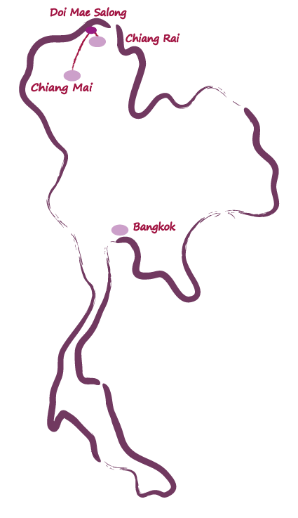 carte triangle d or et chiang mai